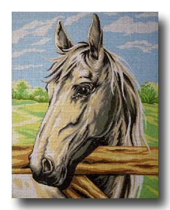 cavallo bianco mezzo punto