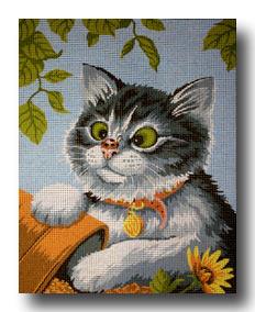 gatto con coccinella mezzo punto