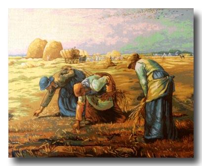 contadini mezzo punto